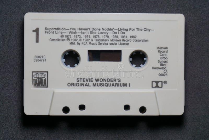 Maravilhas de Stevie fotos de stock royalty free