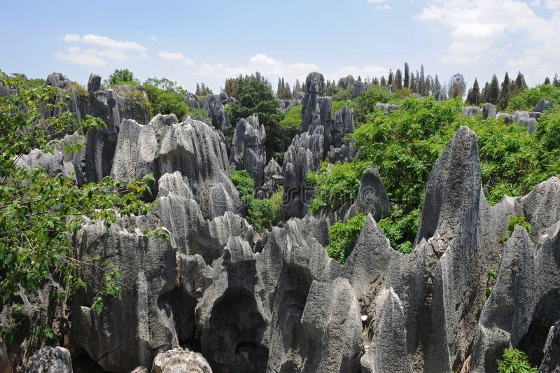 Maravilhas naturais de China (floresta de pedra) foto de stock royalty free