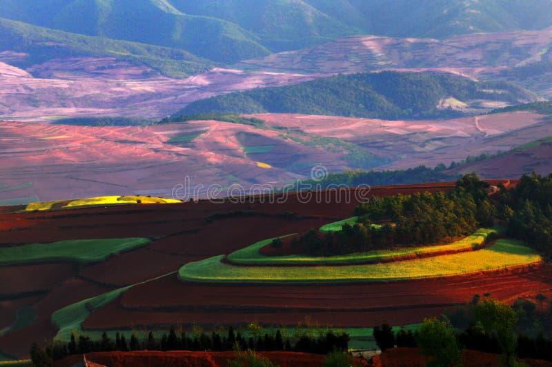 Maravilhas vermelhas da terra fotografia de stock