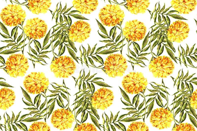 Maravilla de la acuarela con la hoja Modelo inconsútil floral en un fondo blanco stock de ilustración
