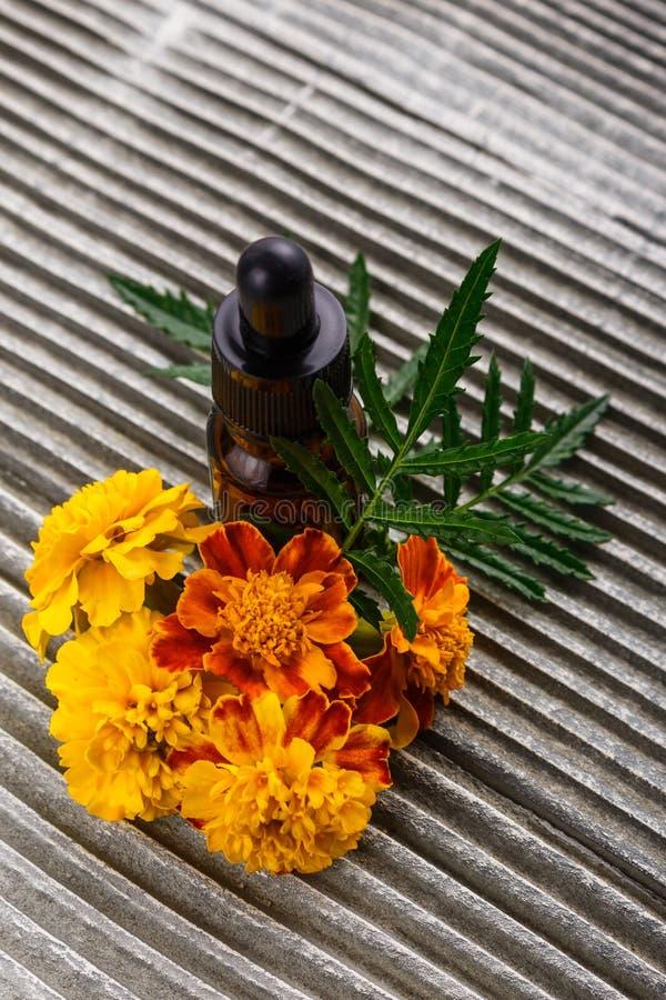 Maravilla del aceite esencial en un fondo rústico de madera gris foto de archivo libre de regalías