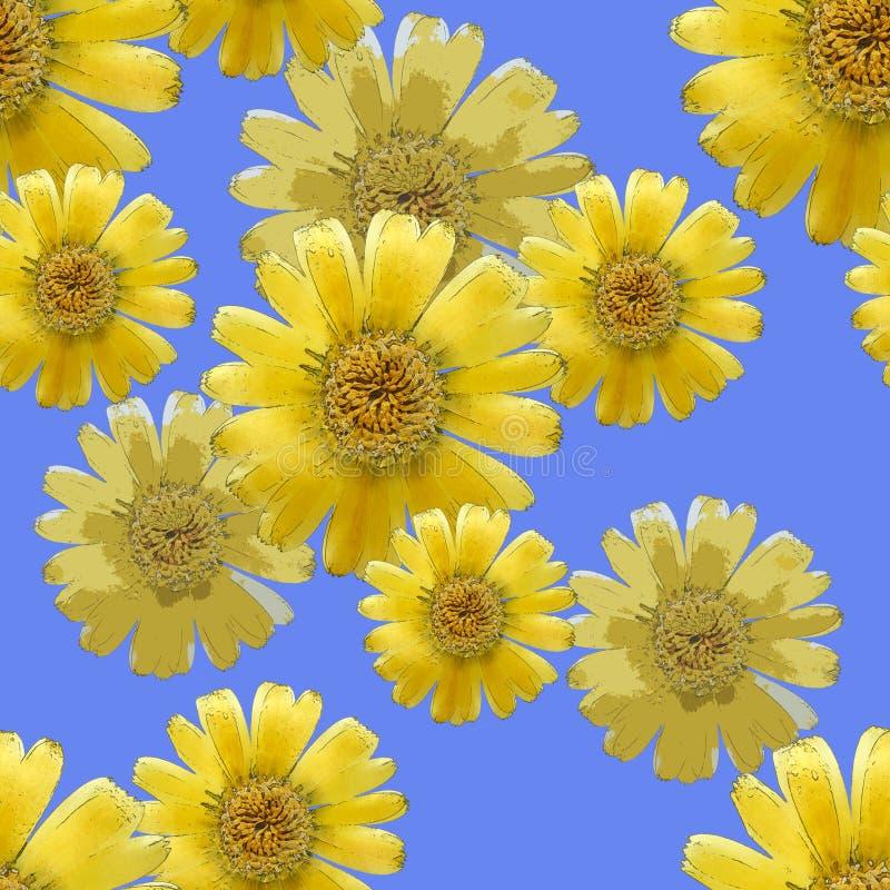 Maravilla, officinalis del calendula Textura inconsútil del modelo del flo fotografía de archivo libre de regalías