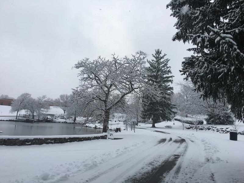Maravillas del invierno imagen de archivo