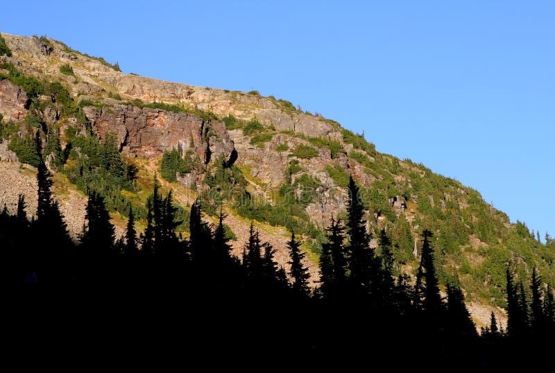 Download Maravillosamente Acantilados Y Bosque Del Lit Foto de archivo - Imagen de colombia, árboles: 1290444