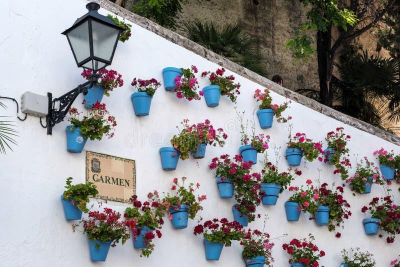 MARBELLA ANDALUCIA/SPAIN - MAJ 23: Röda blommor i blåa Flowerp royaltyfri bild