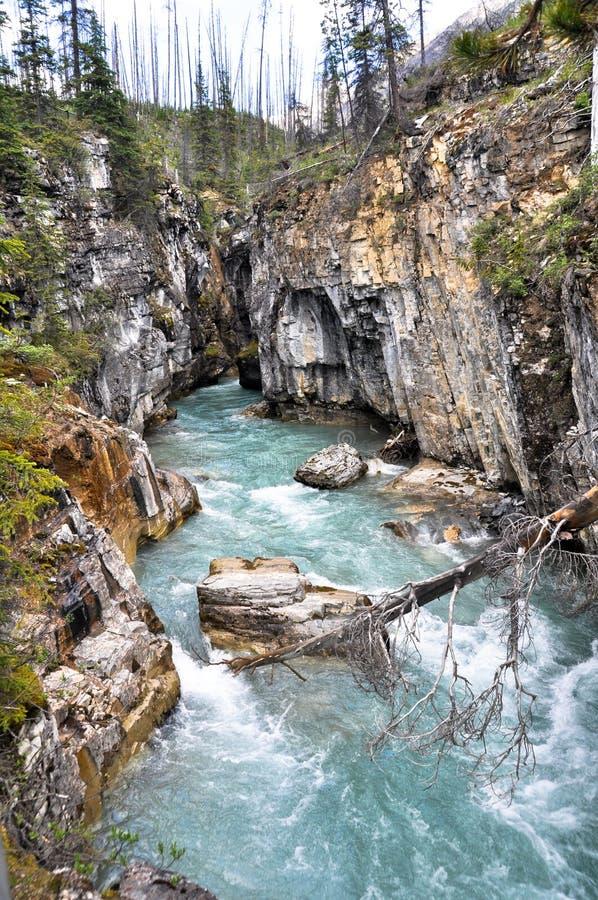 Download Marble Canyon At Kootenay National Park (Canada) Stock Photo - Image: 22582528