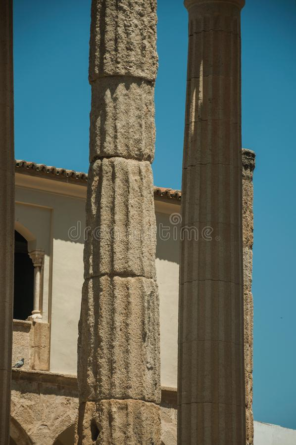 Marble columns in the Temple of Diana at Merida stock image