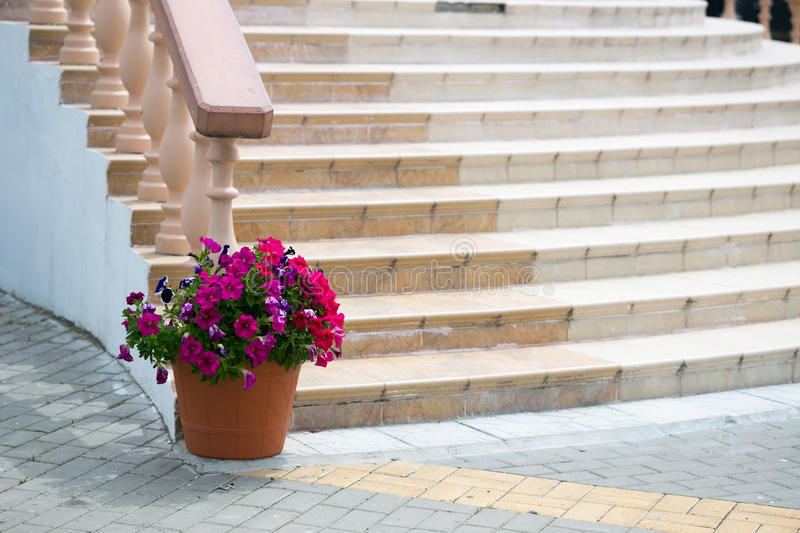 Marble staircase with railing and flower garden. royalty free stock photo