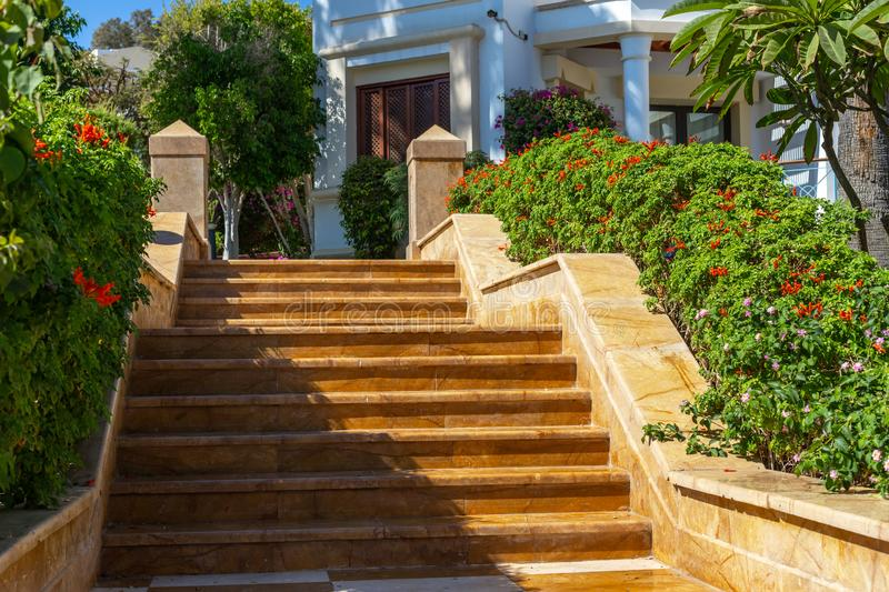 Marble steps. A stone entrance by stairs to a beautiful area. Bushes and blooming flowers on the sides. Stone stairs and lush stock photography