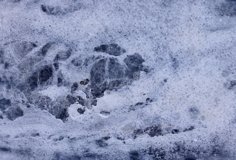 Marble texture. For background or design stock images