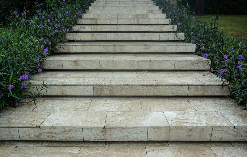 Marble tile stair way with purple flower in side royalty free stock photos