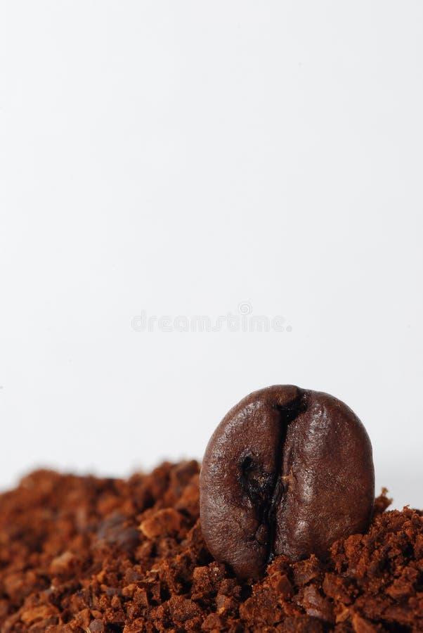 Marc de café avec un portrait de haricot photos libres de droits