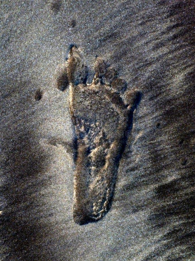 Marca del pie del niño en la arena de la playa del mar imagenes de archivo