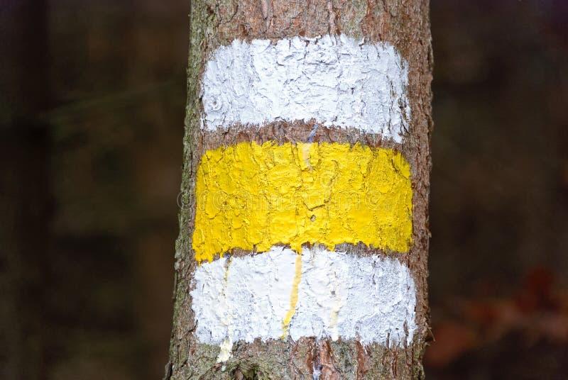 marcador pintado Branco-amarelo-branco foto de stock
