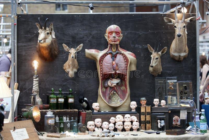 Marché Antic de Spitalfields Aides visuelles à l'anatomie humaine pour des médecins photos libres de droits