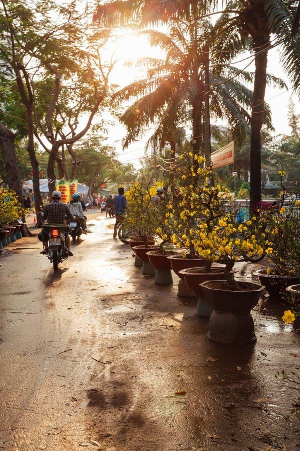 Marché d'arbres de vacances de Tet chez Ho Chi Minh City, Vietnam photographie stock libre de droits