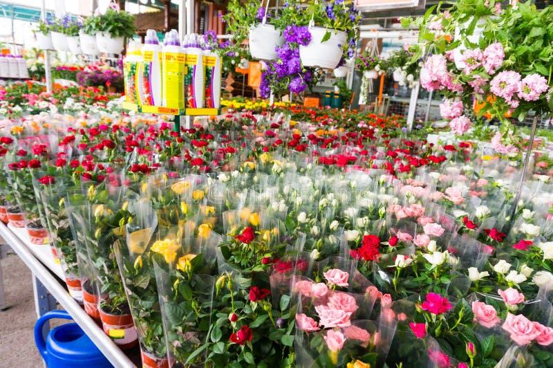 Marché de fleur photos stock