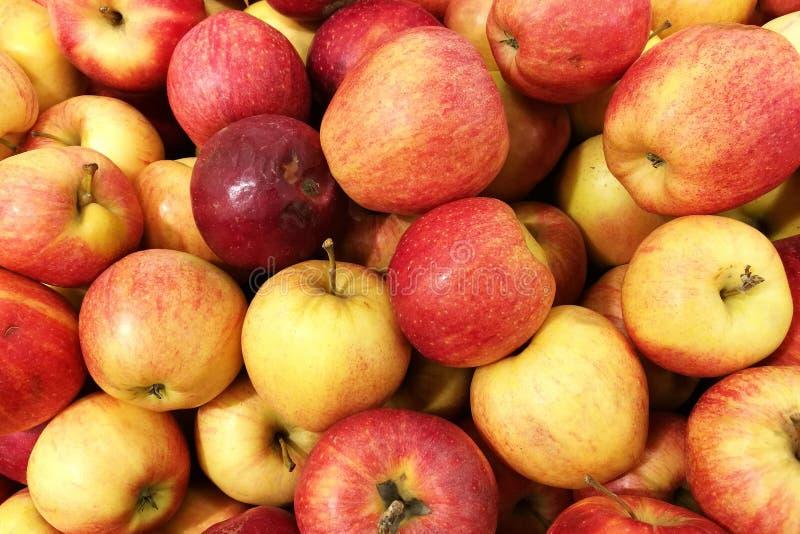Marché de fruit Vente des pommes images libres de droits