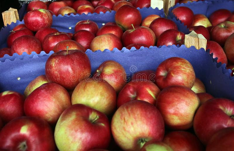 Marché de fruit Vente des pommes photographie stock libre de droits
