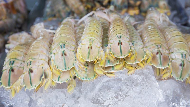 Marché de fruits de mer/fruits de mer frais sur la glace Crevette, écrevisse, palourdes et photos libres de droits