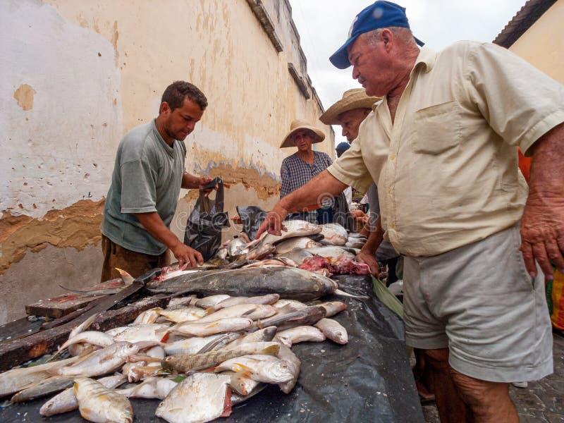 Marché de pêche local Piaçabuçu, Alagoas, Brésil images stock