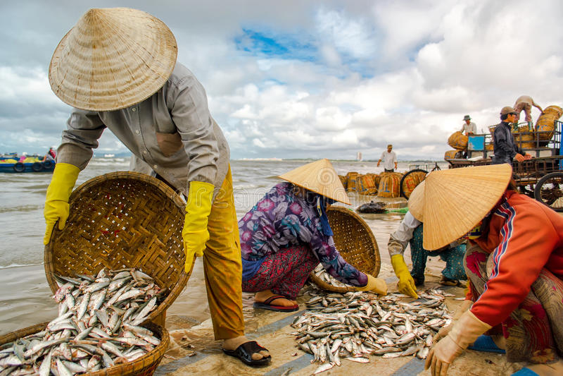 Marché de pêche sur la plage image stock