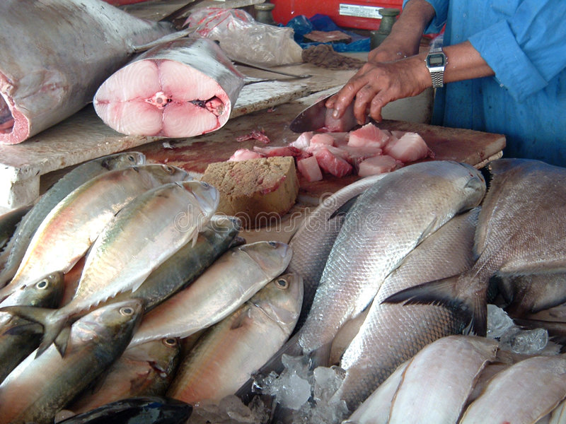 Marché de poissons photos libres de droits