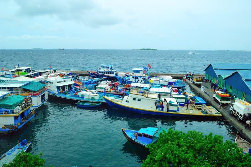 Marché de poissons et bateaux de pêche dans l'atoll mâle photo libre de droits