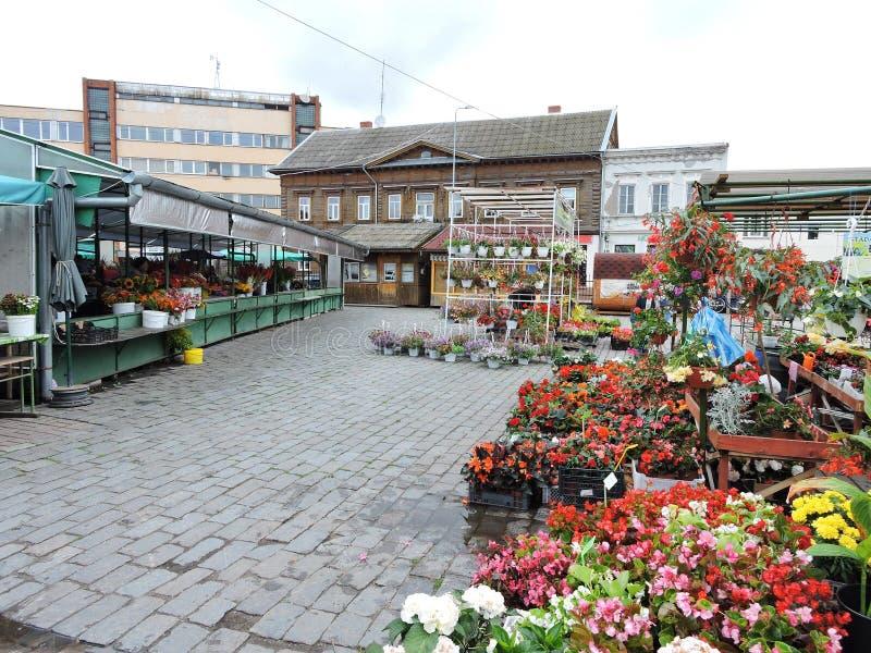 Download Marché De Ville De Liepaja, Lettonie Photographie éditorial - Image du fleur, europe: 77158477