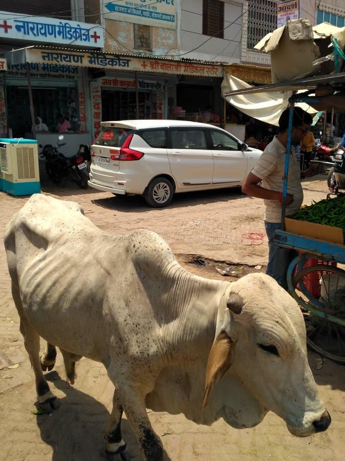 Marché indien vu photographie stock libre de droits