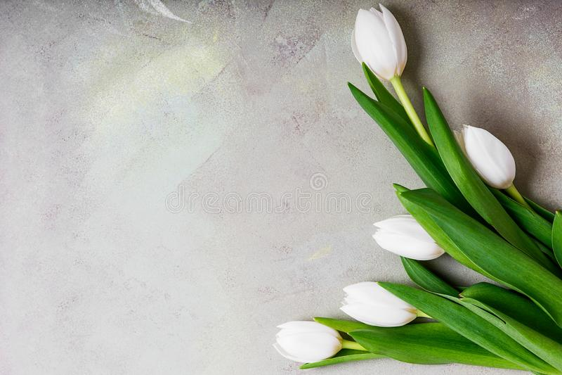 8 march happy womens day. White tulips on the table royalty free stock photo