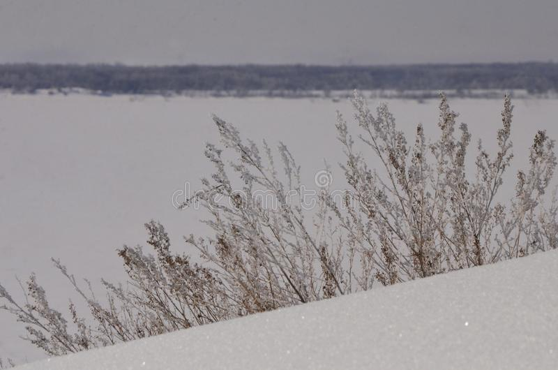 March. The snow is sparkling.. Bank Of The Volga. stock image