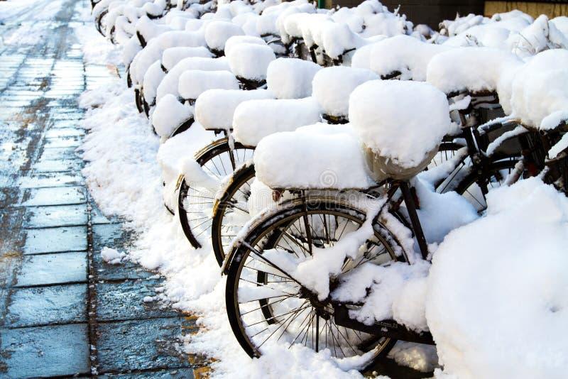 bikes in the snow stock image
