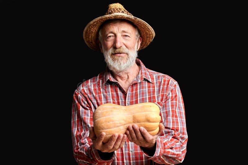 Marchand de légumes supérieur avec les rides et la barbe, tenant le petit potiron image stock