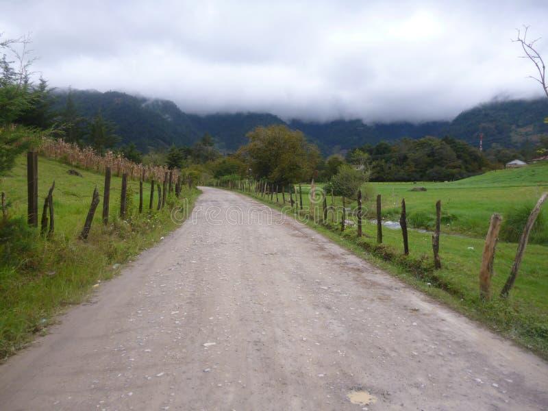 Marchant sur la forêt de Nebaj, quiche image stock