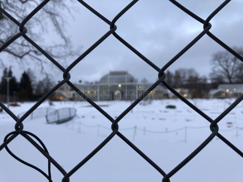 Marche à Helsinki en hiver images stock