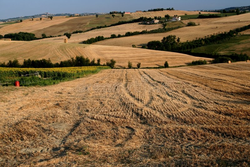 Download Marche countryside scene stock image. Image of field, fields - 2750927