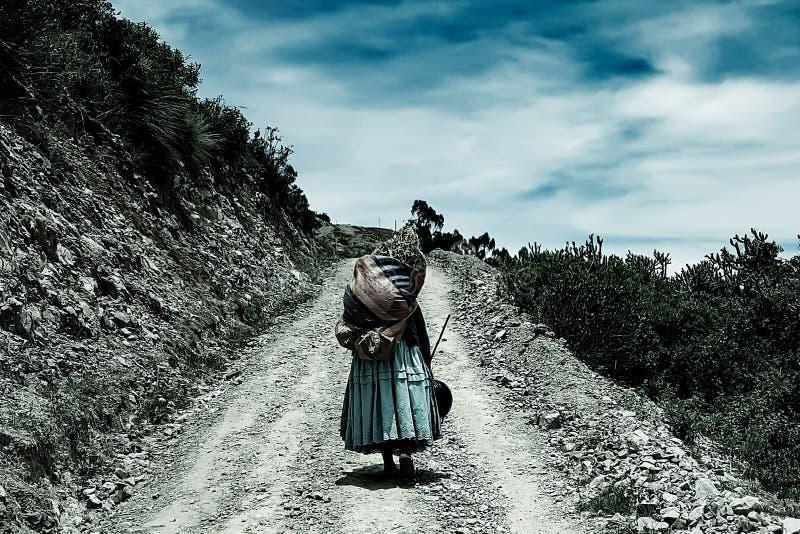 Marche dans les montagnes photo libre de droits