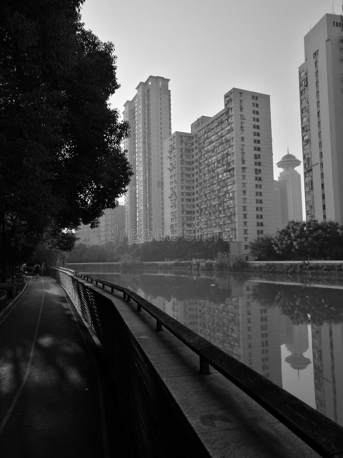 Marche de matin photographie stock libre de droits