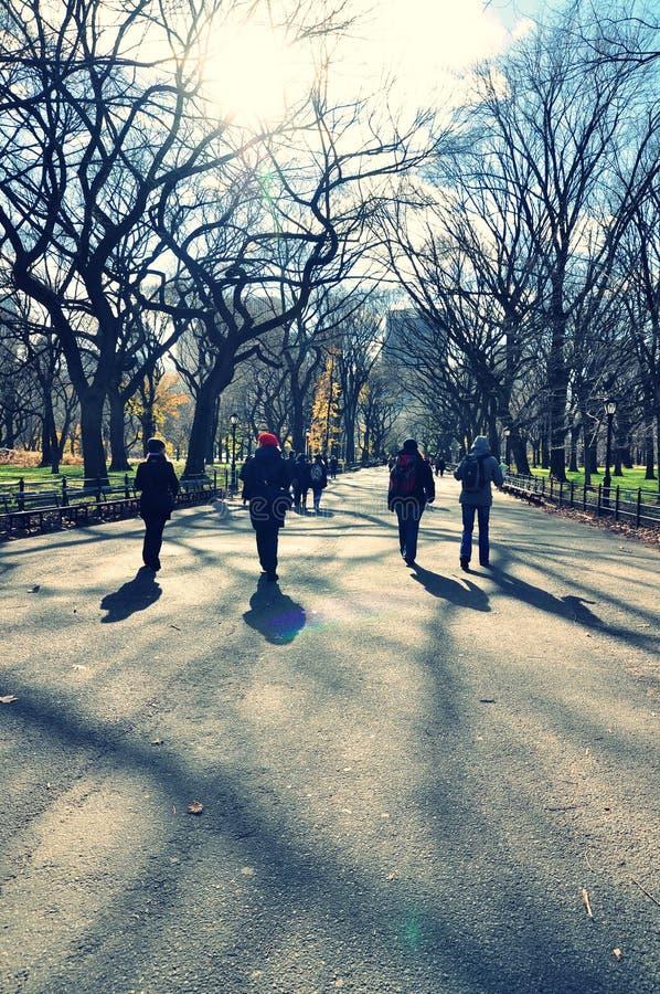 Marche en parc images libres de droits