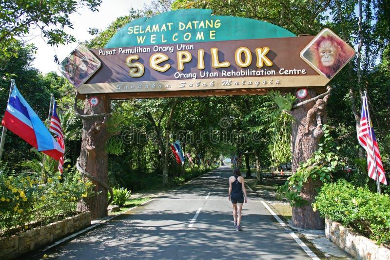 Marche par l'entrée au centre de réadaptation de Sepilok photographie stock