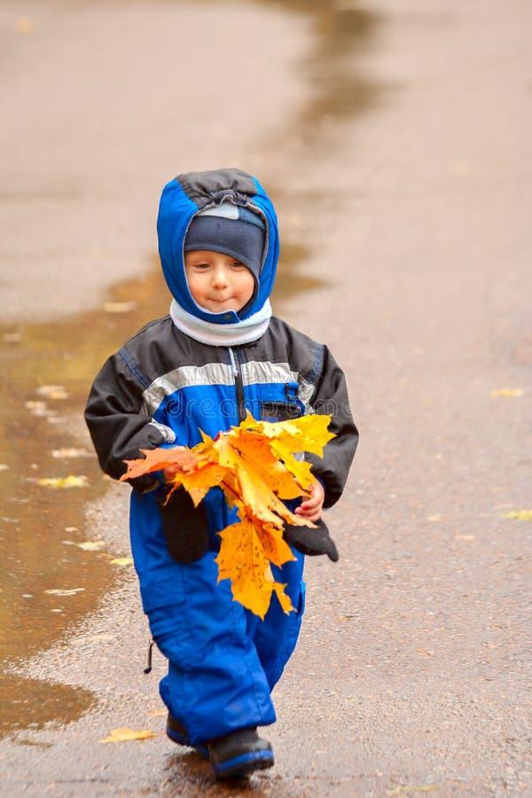 Marche par le parc d'automne (01) image libre de droits