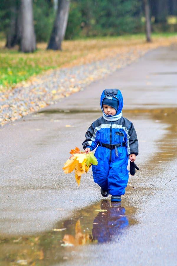 Marche par le parc d'automne photographie stock libre de droits