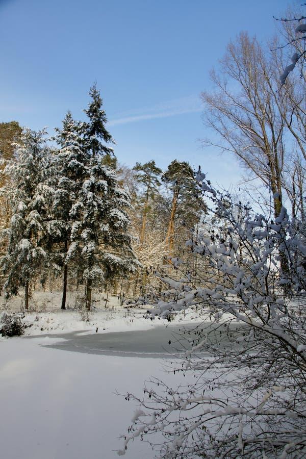 Marche pendant l'hiver photo stock
