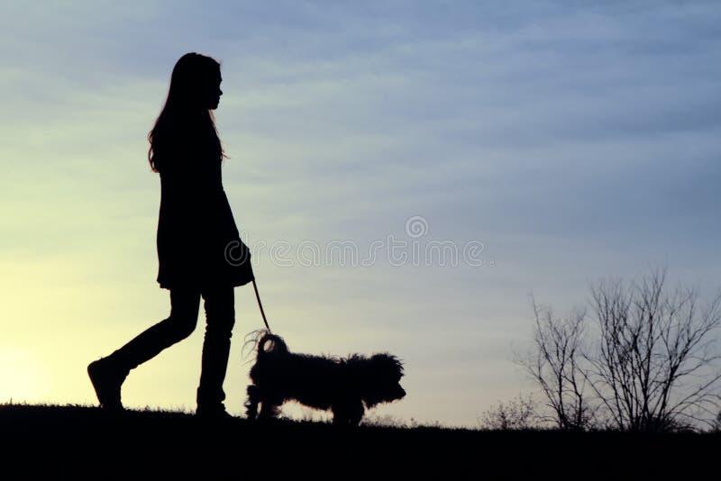 Marche Sparky au coucher du soleil images stock