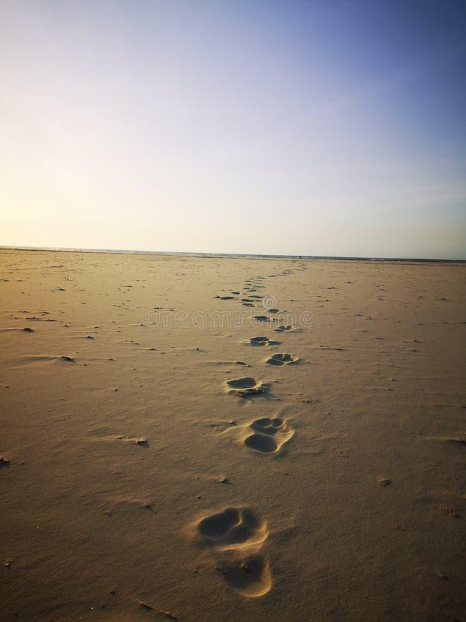 Marche sur la plage sablonneuse et beau jour ensoleillé avant coucher du soleil photographie stock