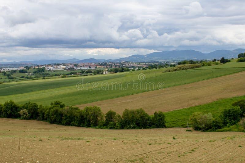 Marche wzgórza między uprawami i orzącymi polami obrazy stock