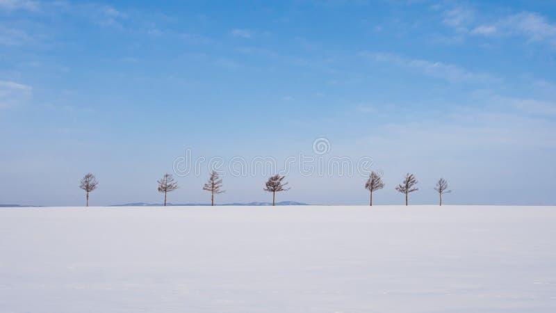 Marchenheuvel (Sprookjesheuvel), Hokkaido, Japan royalty-vrije stock afbeelding