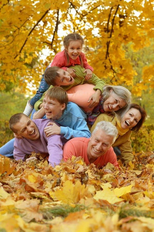 Marchent une famille nombreuse image libre de droits