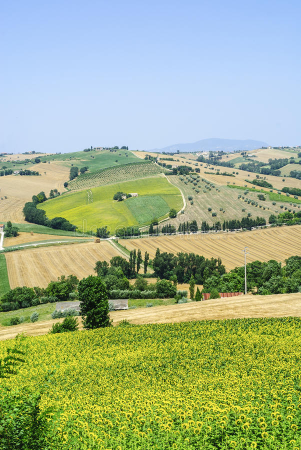 Marches (Italy) - Landscape Royalty Free Stock Image